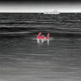 FLIR rescue image